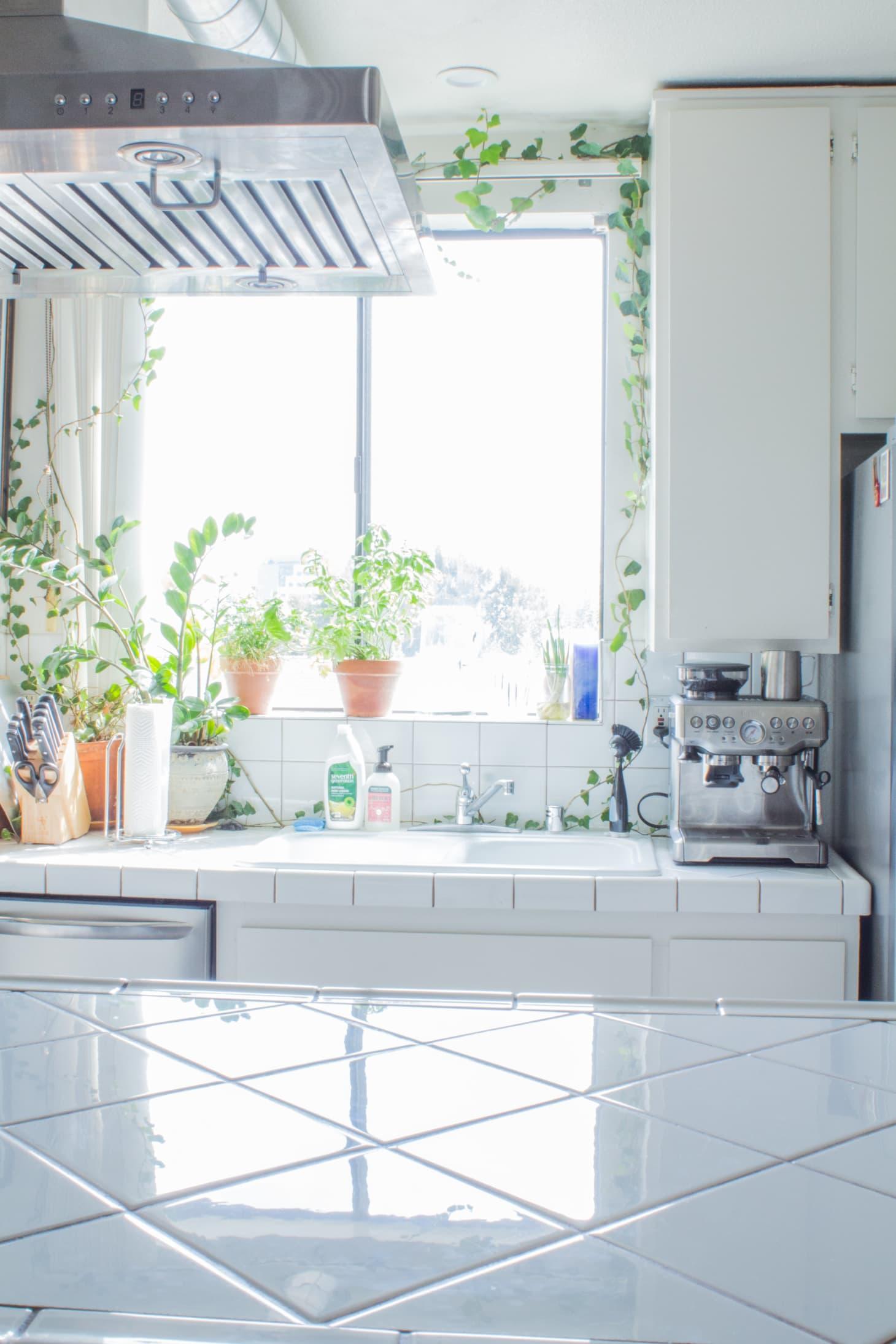 Kitchen Sink Window Decorating Ideas | Apartment Therapy on ideas for kitchens design, ideas for kitchens art, ideas for kitchens paint, ideas for kitchens plumbing,
