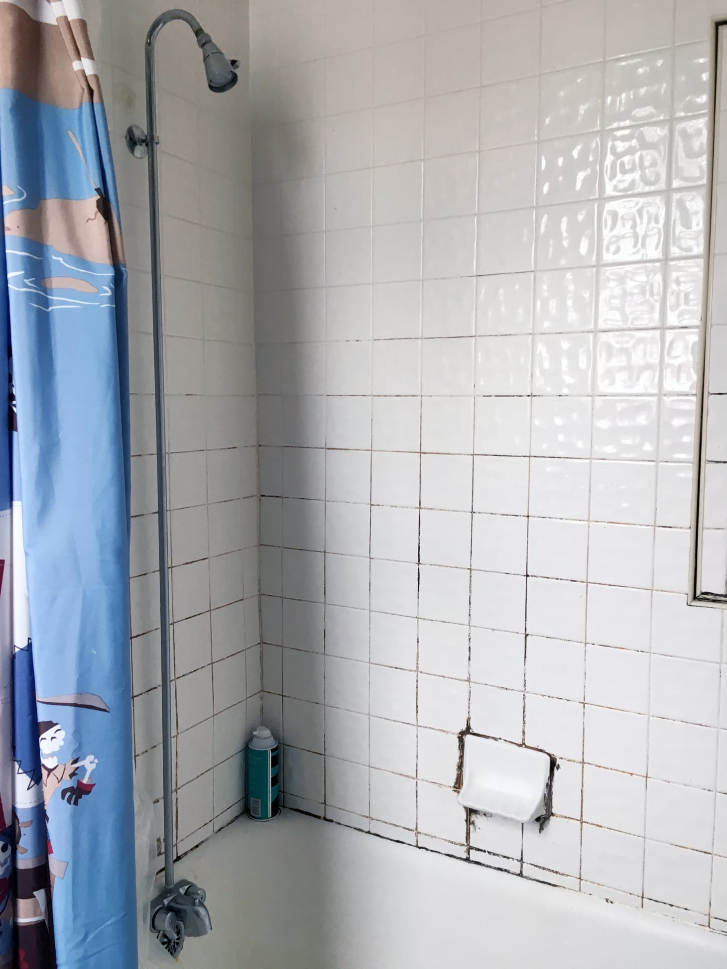 Best Grout Cleaner Options For Rusty Moldy Shower Tile
