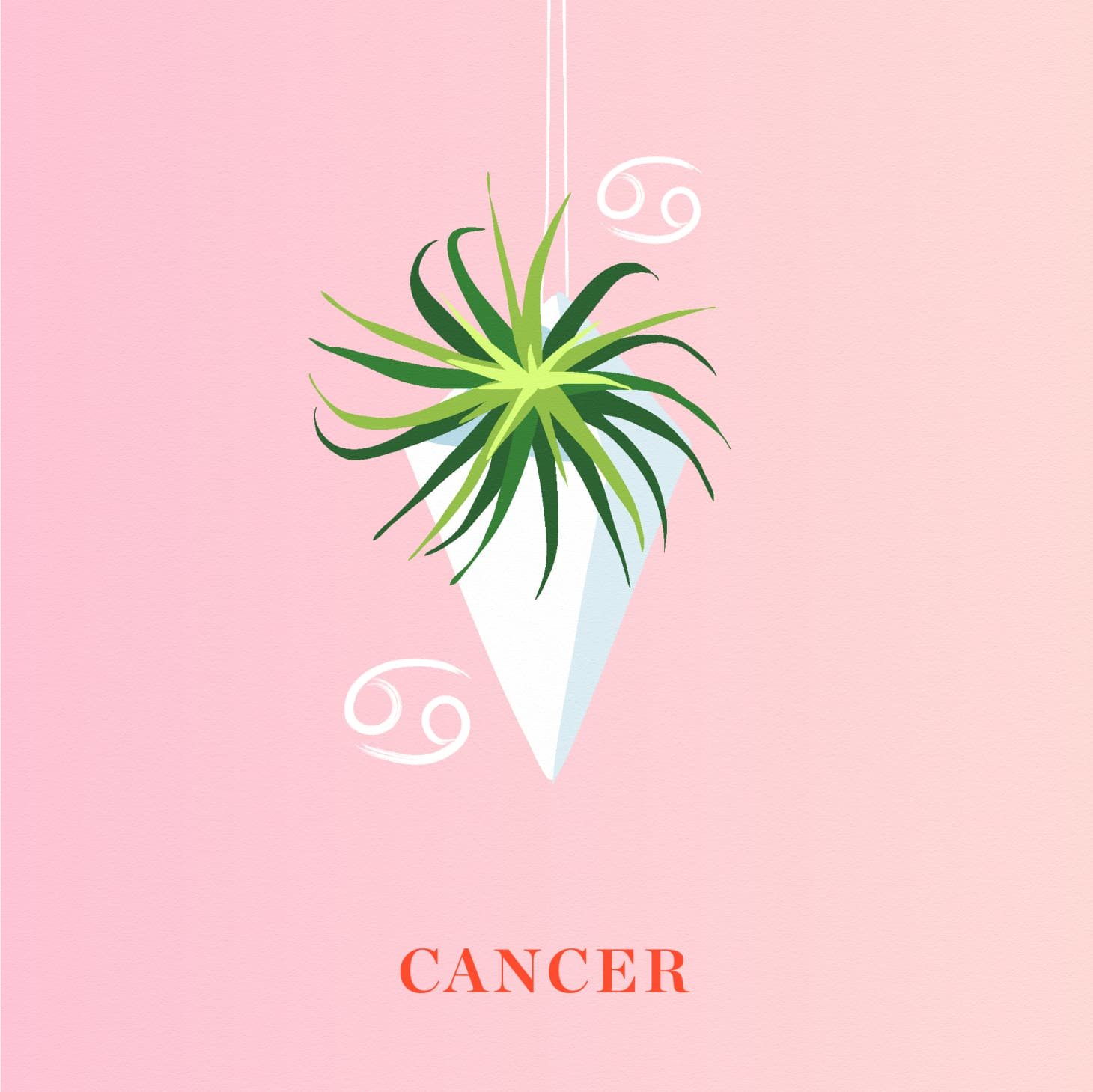 The Best Houseplant for Your Zodiac Sign   Apartment Therapy