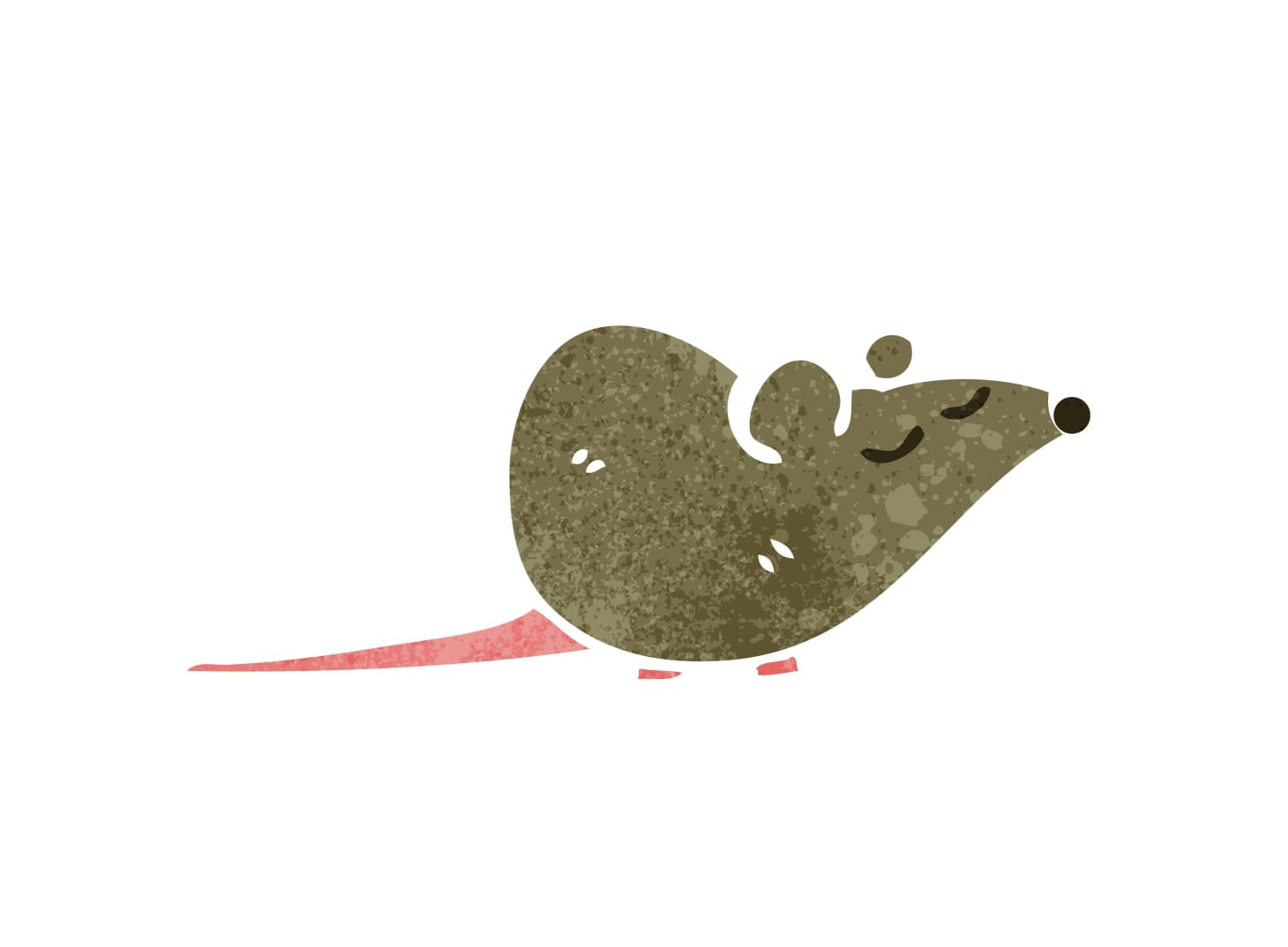 Does Peppermint Oil Keep Mice Out of the Kitchen? I Unfortunately