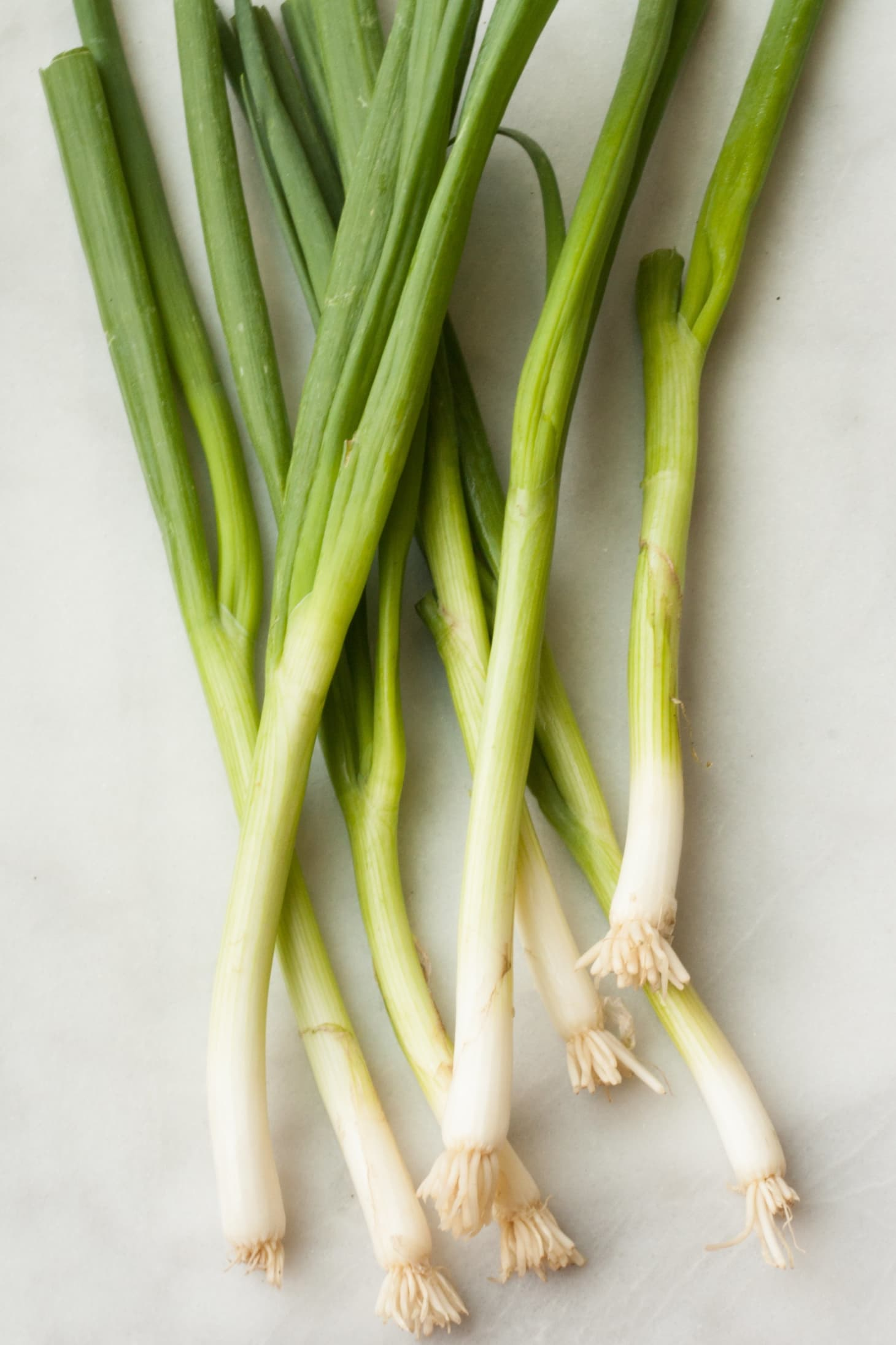 Difference Between Scallions and Green & Spring Onions | Kitchn