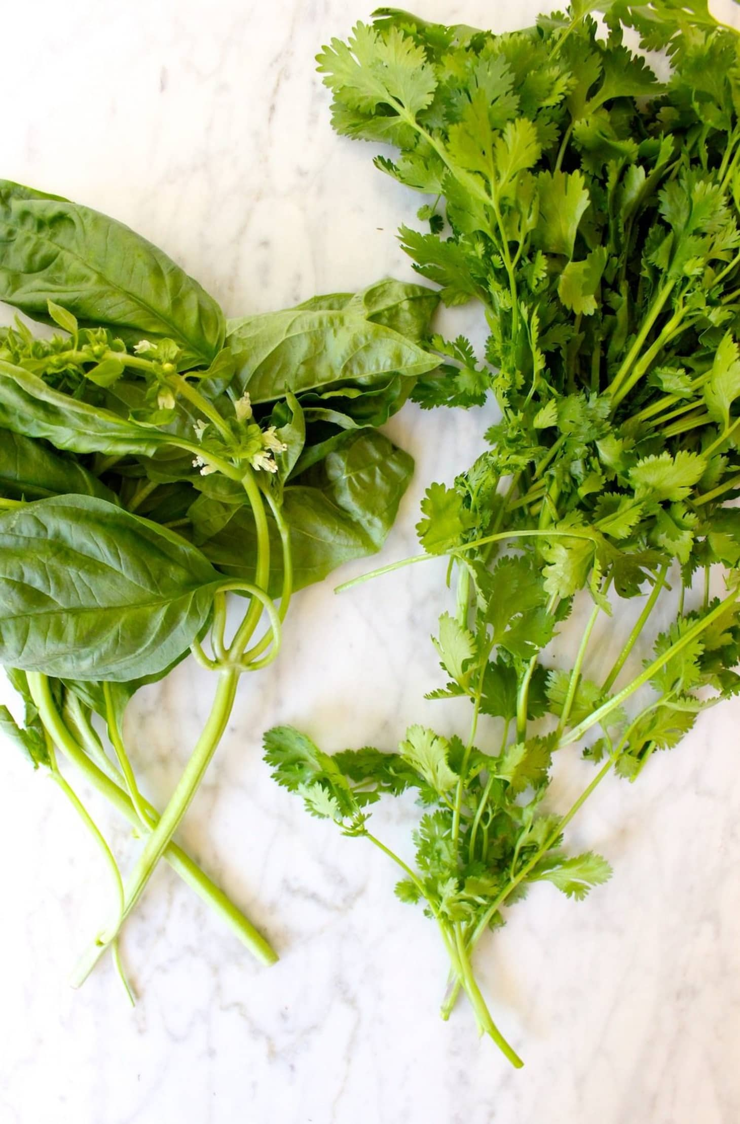 7 Reasons You Shouldn't Throw Away Herb Stems | Kitchn