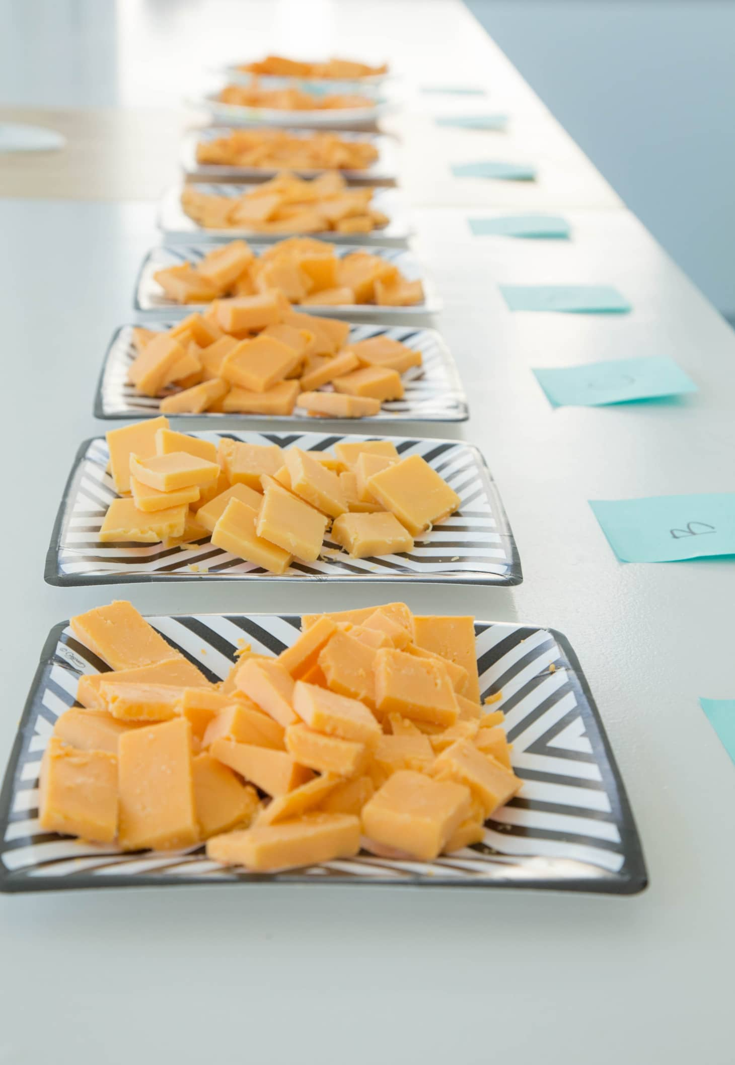 The Cheddar Cheese Taste Test: We Tried 8 Brands and Here's