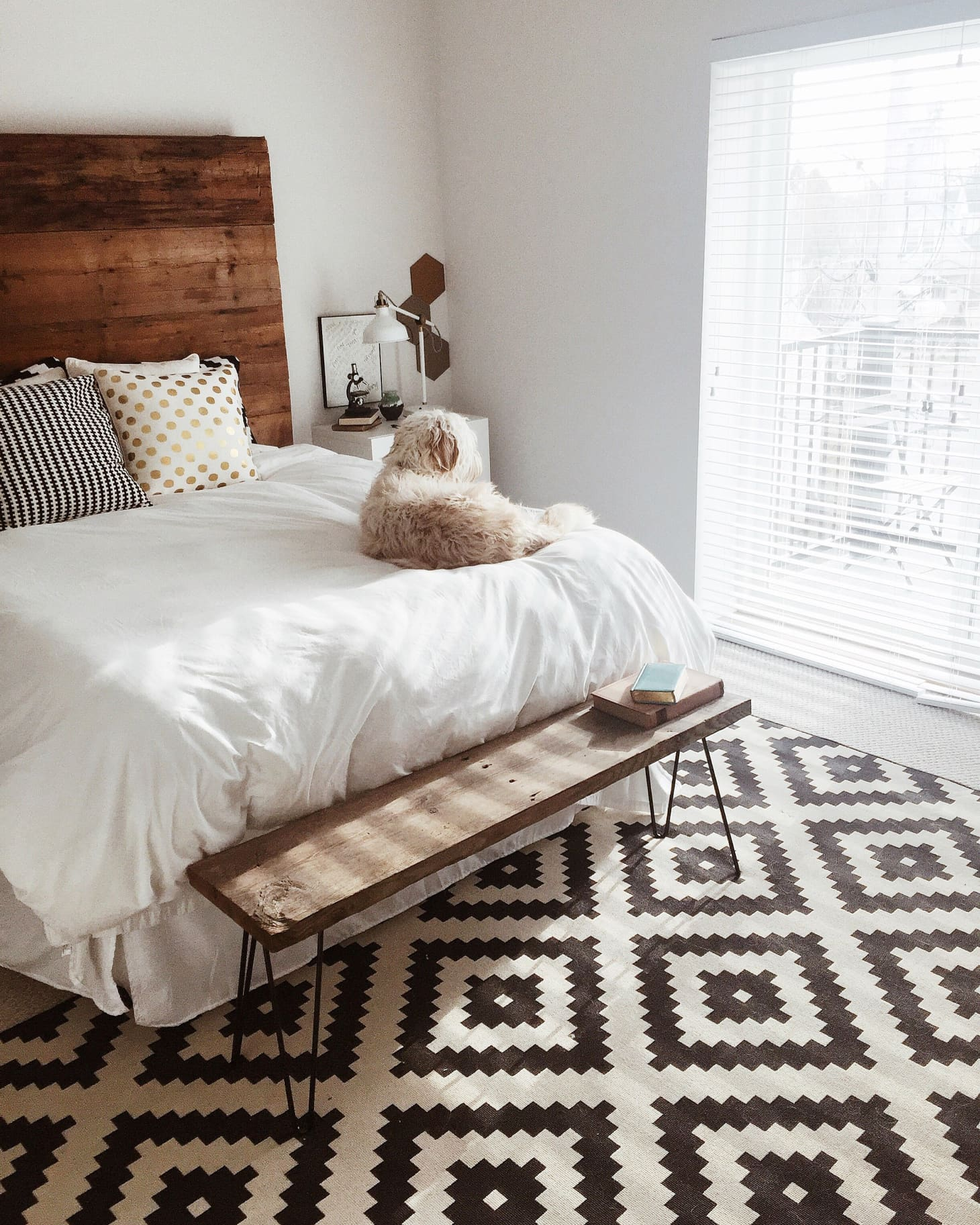 Beautiful Apartments: Hannah's Bright & Beautiful Apartment (With A Show