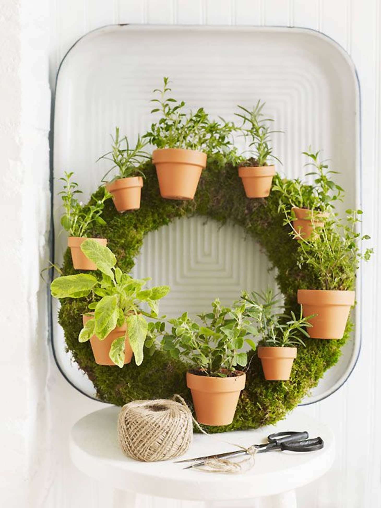 15 Indoor Garden Ideas for Wannabe Gardeners in Small ...