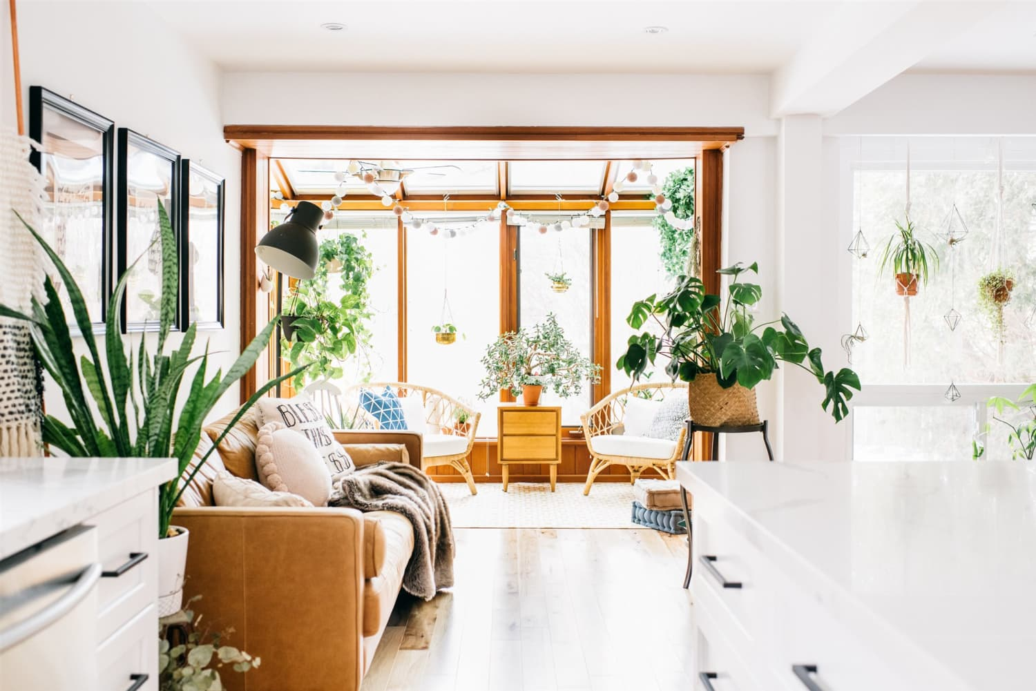 This Sunny Home Has 75 Houseplants… Each with Its Own Name!