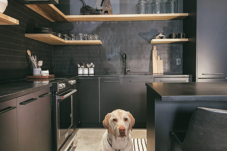 If You Like Black, You'll Love This Sleek Modern Kitchen Reno
