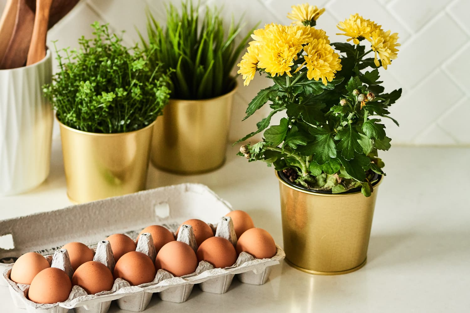 You Should Save Your Hard-Boiled Egg Water—for Your Plants!