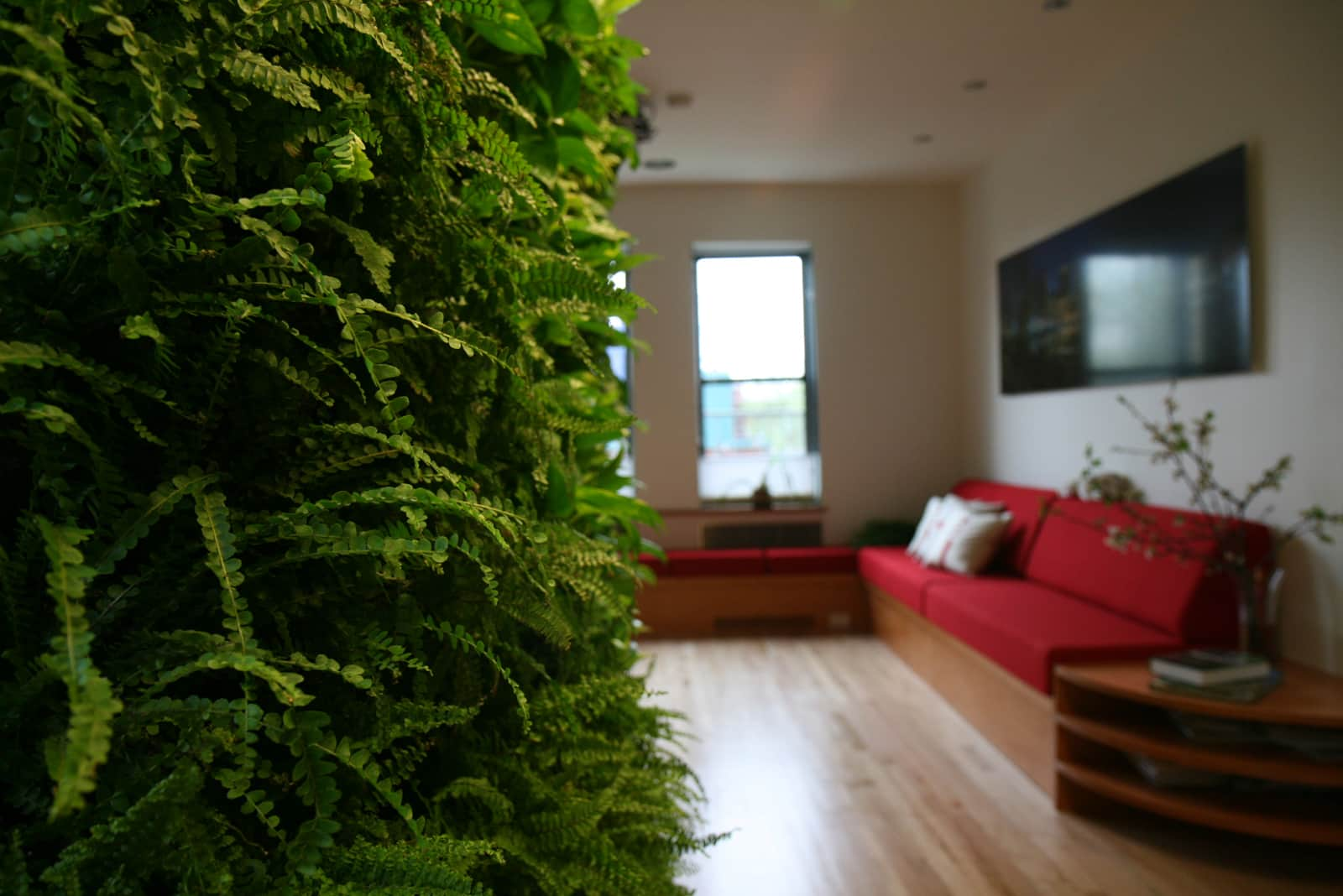 Matthew And Emma S Eco Environment Apartment Therapy