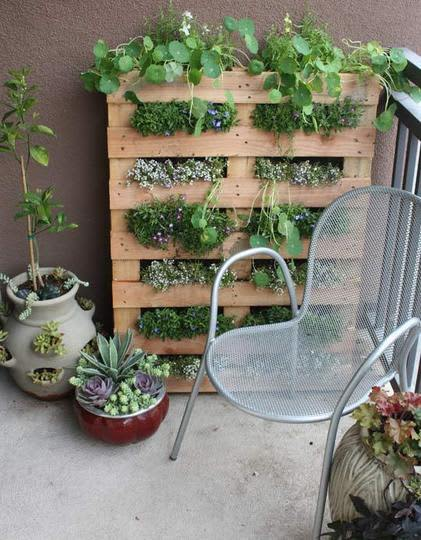 Gardening Without a Garden: 10 Ideas for Your Patio or ...
