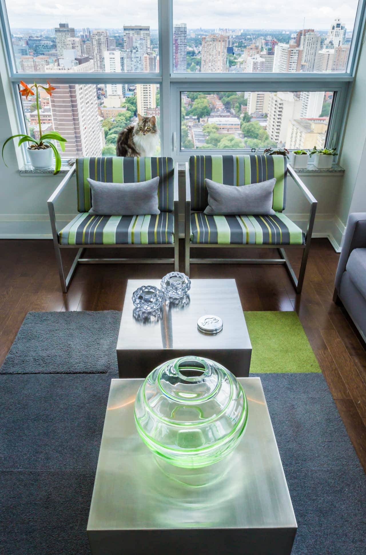 Greg & Rob's Sky Suite: gallery image 4