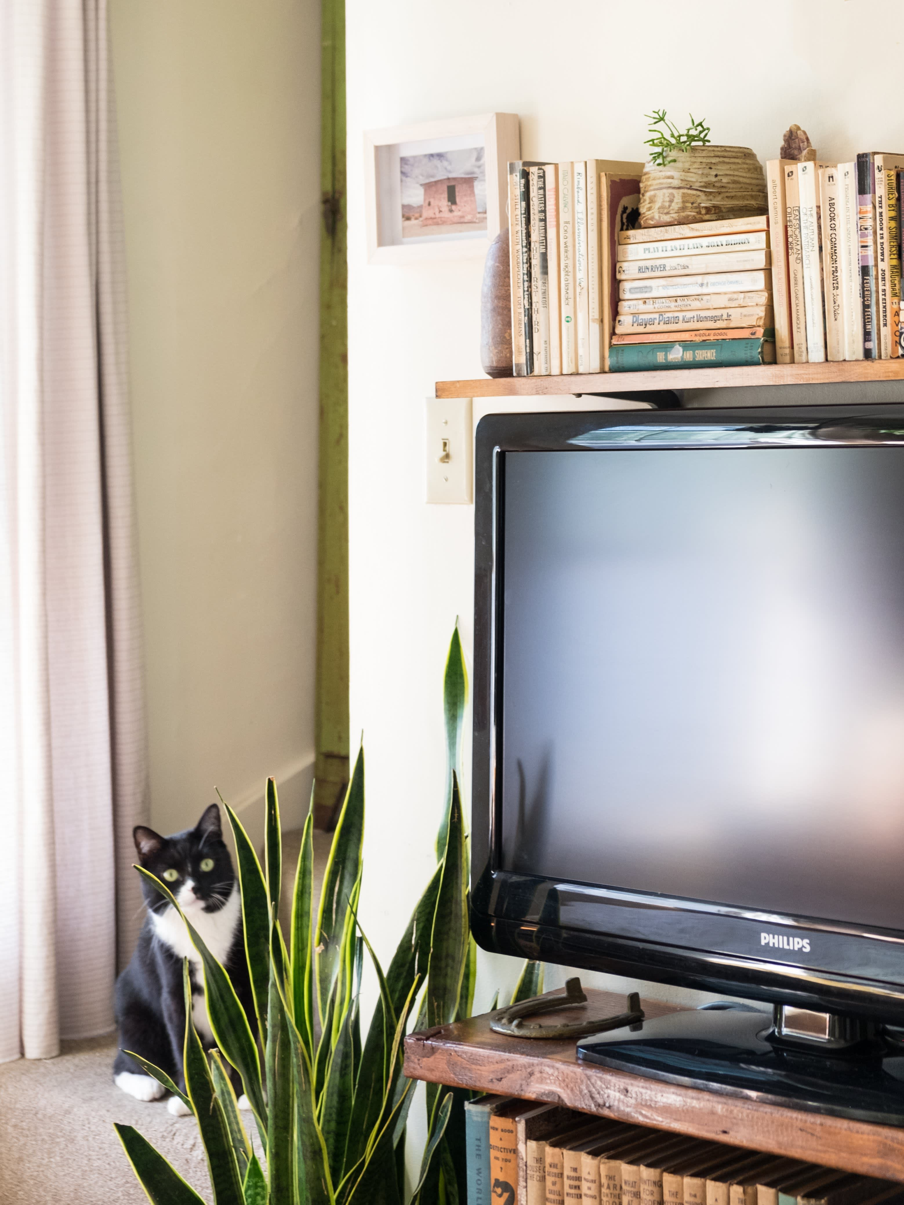 House Tour: An Apartment With a Chill 1970s Feel | Apartment