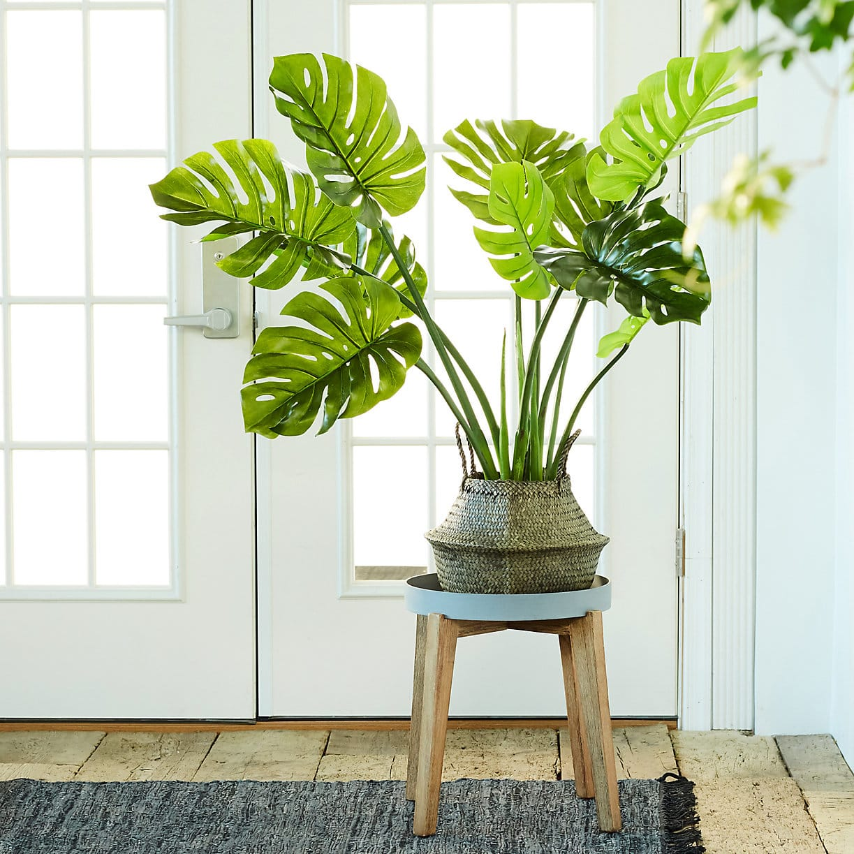 Faux Plants - Fake Plants That Look Real | Apartment Therapy