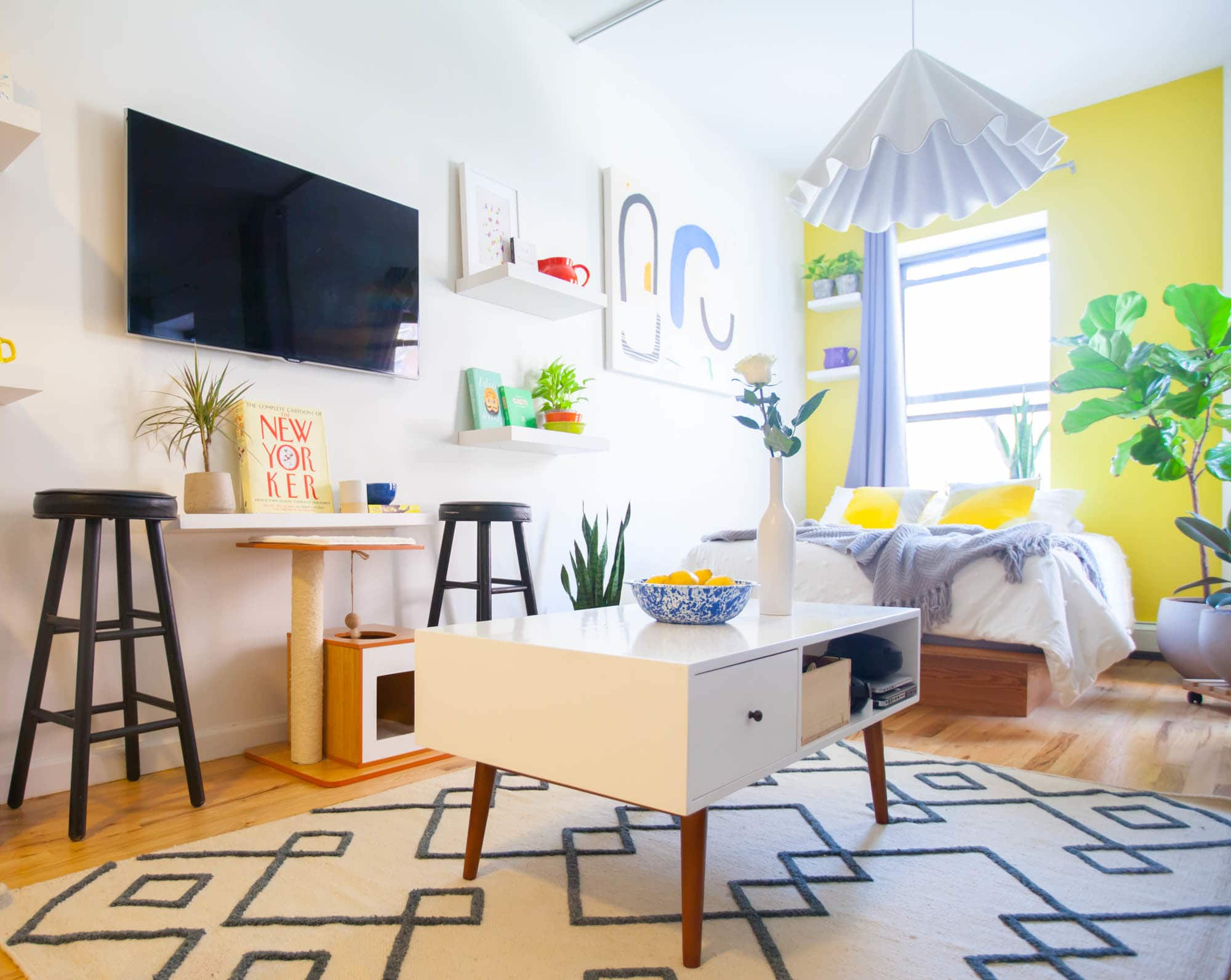 House Tour: A Bold, Colorful Bronx Studio   Apartment Therapy