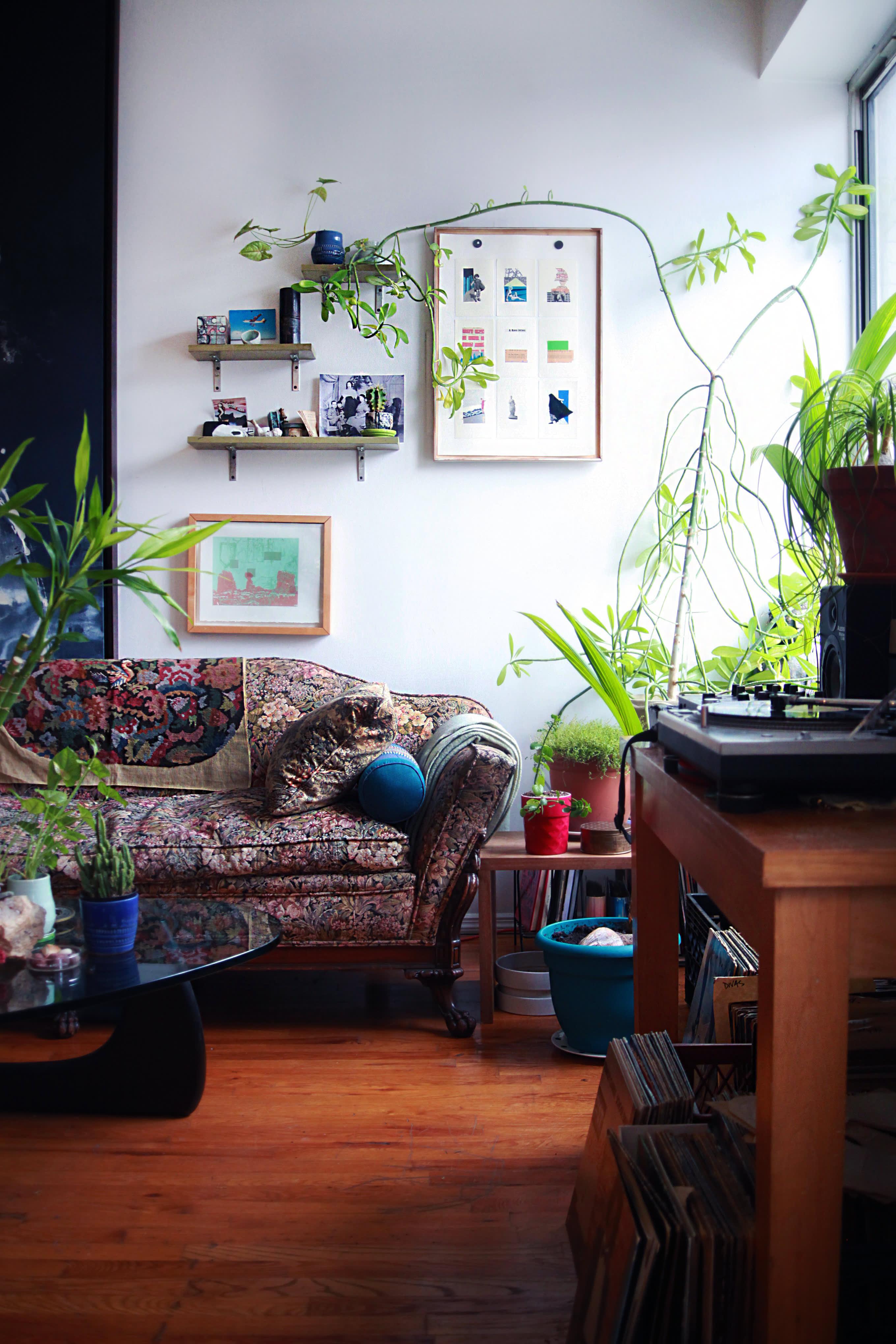 Brooklyn Tour: A Multi-Media Artist's Plant-FIlled Loft