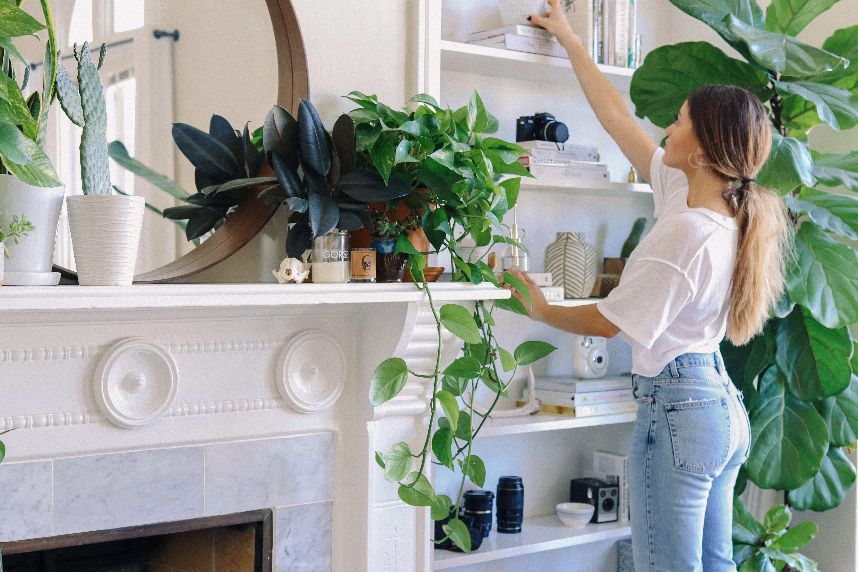 Plant Filled Simple Chic Studio Apartment Decor Photos