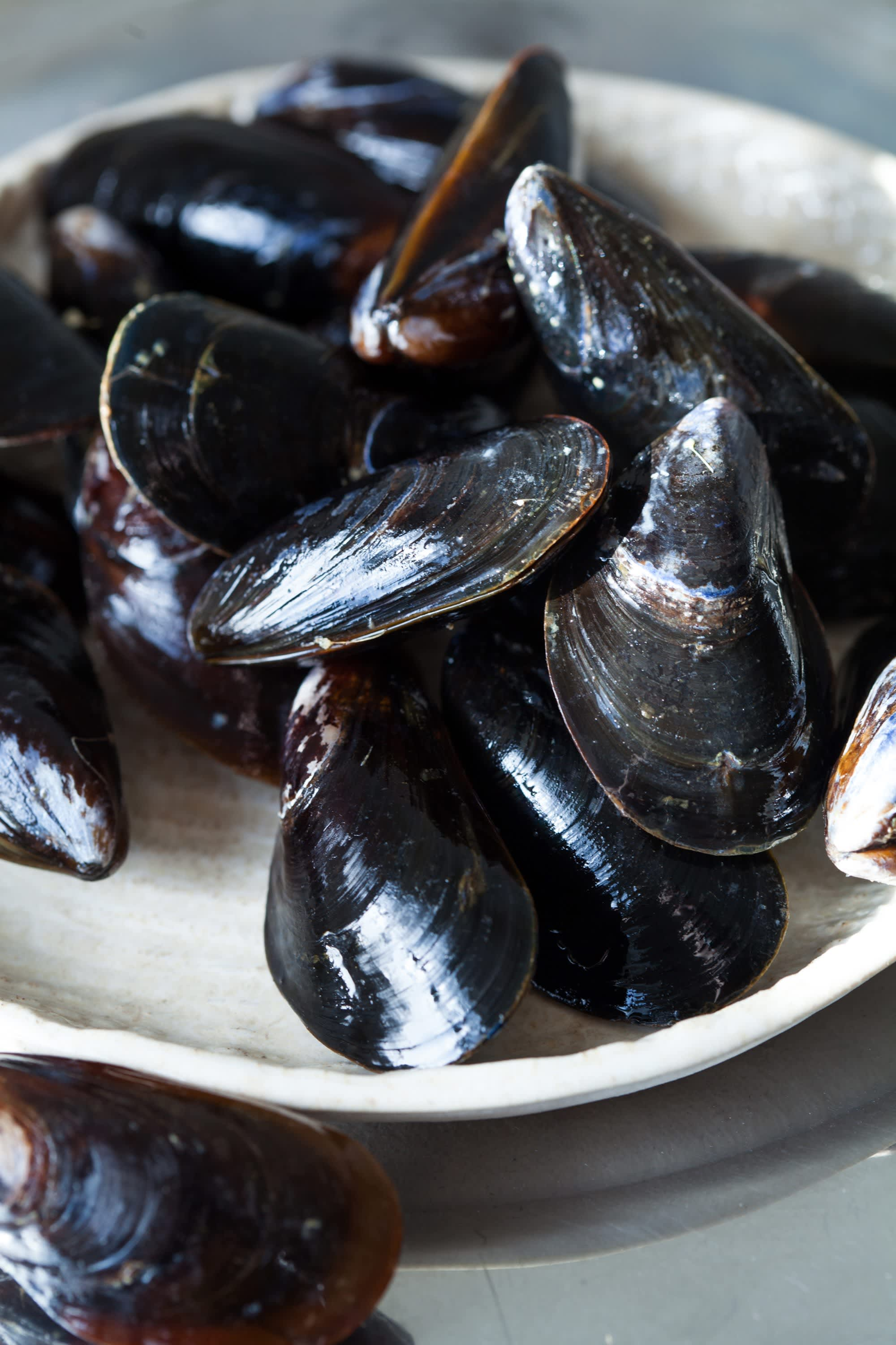 How To Cook Mussels on the Stovetop   Kitchn