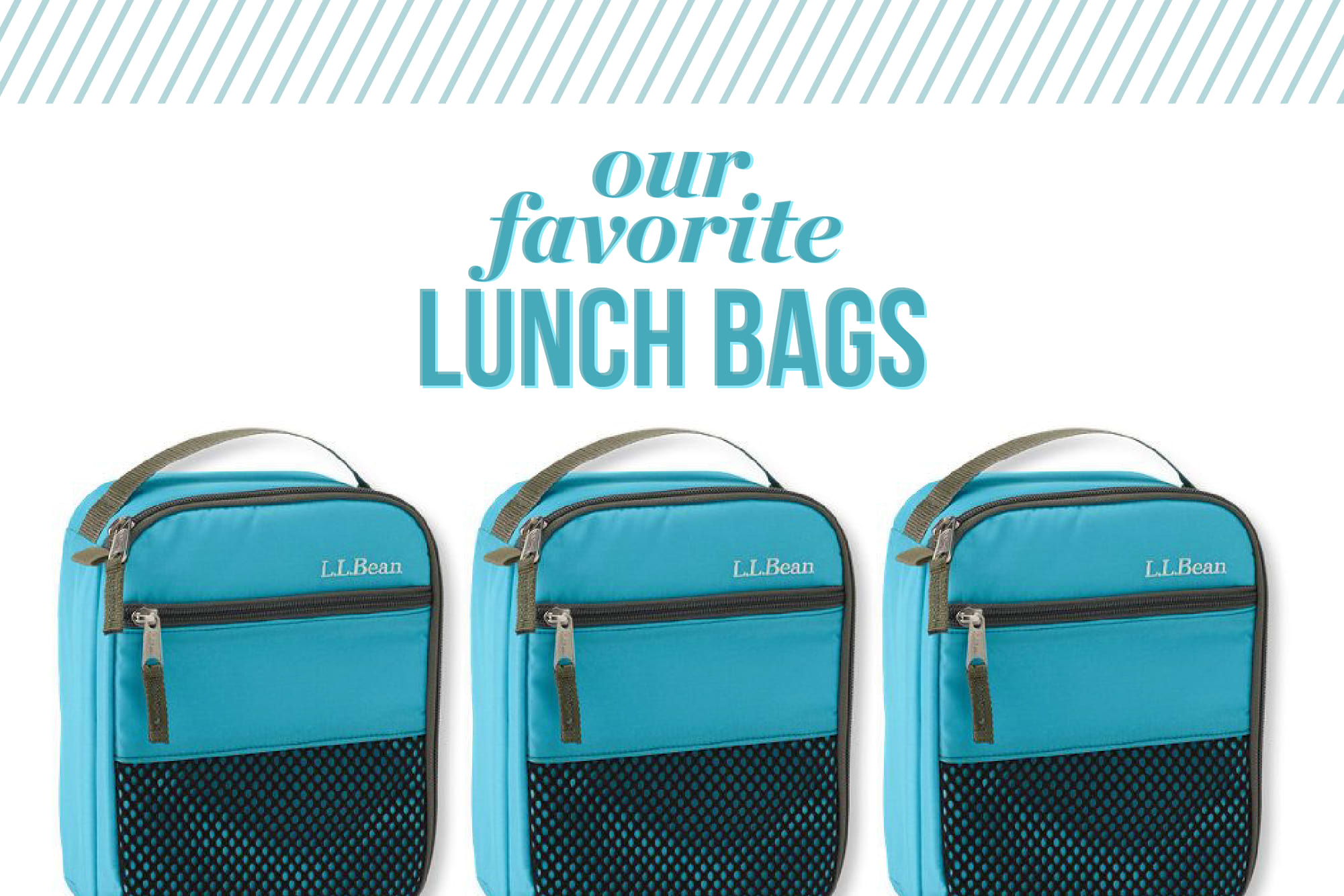 Brilliant 5 Lunch Boxes That Will Keep Your Food The Coldest Kitchn Gmtry Best Dining Table And Chair Ideas Images Gmtryco