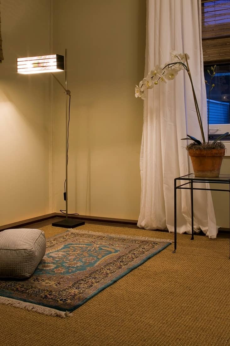 House Tour: David's Andersonville Apartment: gallery image 7