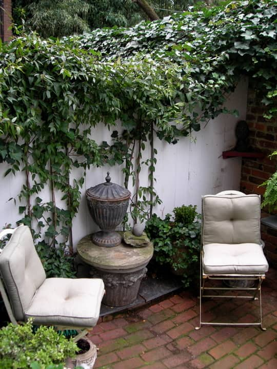 DC House Tour: Polly's Pomander Walk House: gallery slide thumbnail 8