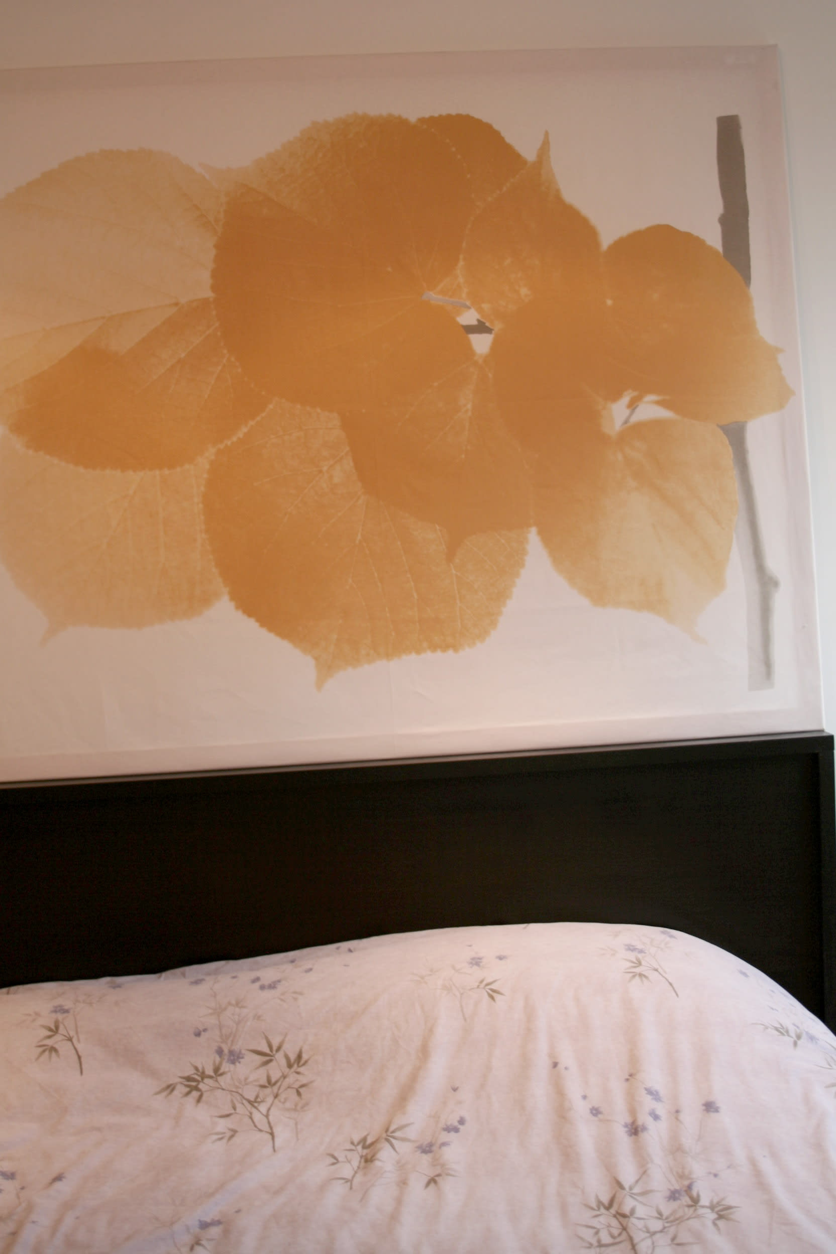 House Tour: Lucinda and Nicholas' Transformed Tenement: gallery slide thumbnail 22