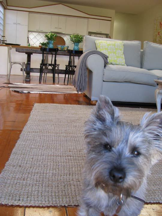 House Tour: Camilla's Armadale Abode: gallery slide thumbnail 26