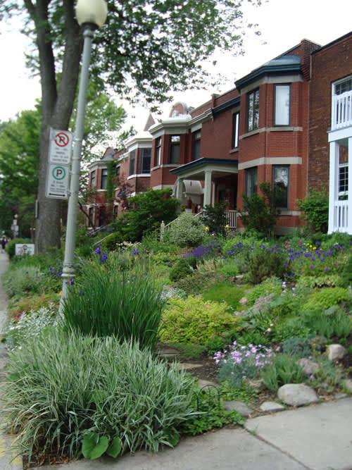 Look! A Multi-Yard Flower Garden: gallery slide thumbnail 7