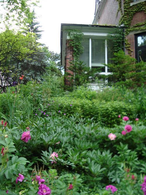 Look! A Multi-Yard Flower Garden: gallery slide thumbnail 6