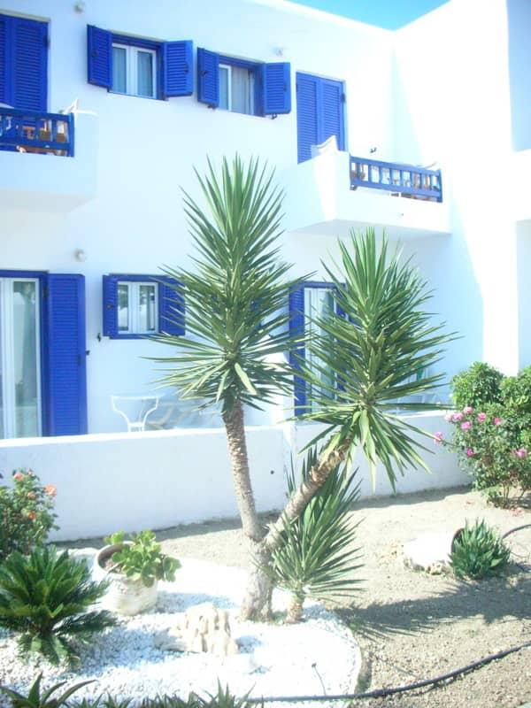 Hotel Ammos in Mykonos: gallery slide thumbnail 1
