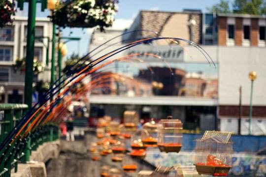Inspiring Public Art: Fishing Light by Luz Interruptus: gallery slide thumbnail 5