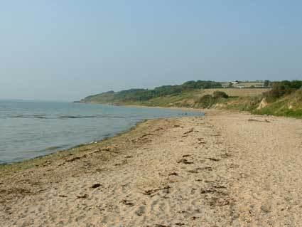 Green Tour: Helen & Frazer's Solar Powered Beach Shack: gallery slide thumbnail 8