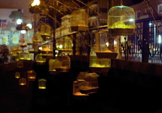 Inspiring Public Art: Fishing Light by Luz Interruptus: gallery slide thumbnail 4
