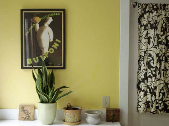 Roundup: Sunny Yellow Walls: gallery slide thumbnail 3