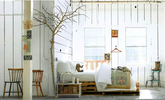 Bringing the Outside In: Decorating With Branches: gallery image 5