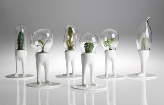 Fancy P(l)ants: Domsai Terrariums by Matteo Cibic: gallery slide thumbnail 1