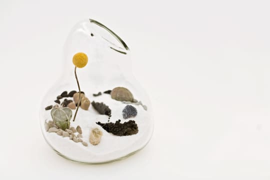Dainty by Design: Terrariums by Lítill: gallery slide thumbnail 2