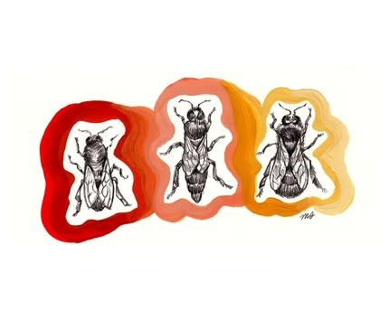 Bee Happy! Apiary Designs To Savor: gallery slide thumbnail 2
