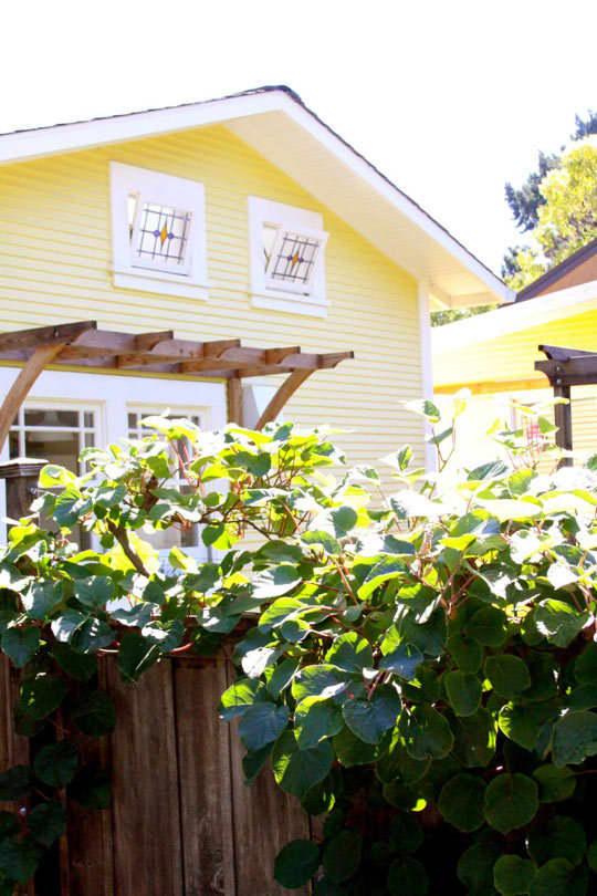 Alisha's Bright White Guest Cottage: gallery slide thumbnail 27