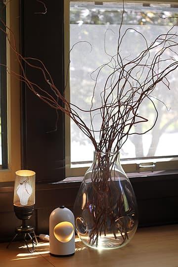 Brad, Lis & Meade's Light-Filled Bungalow: gallery slide thumbnail 4