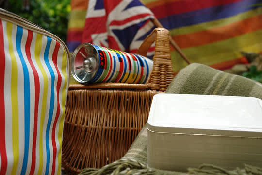 Let's Have a Picnic: gallery slide thumbnail 9