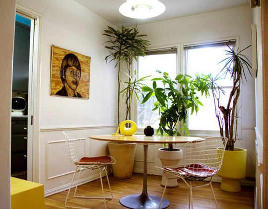 Inspiration: Bringing Bigger Plants Indoors: gallery slide thumbnail 10