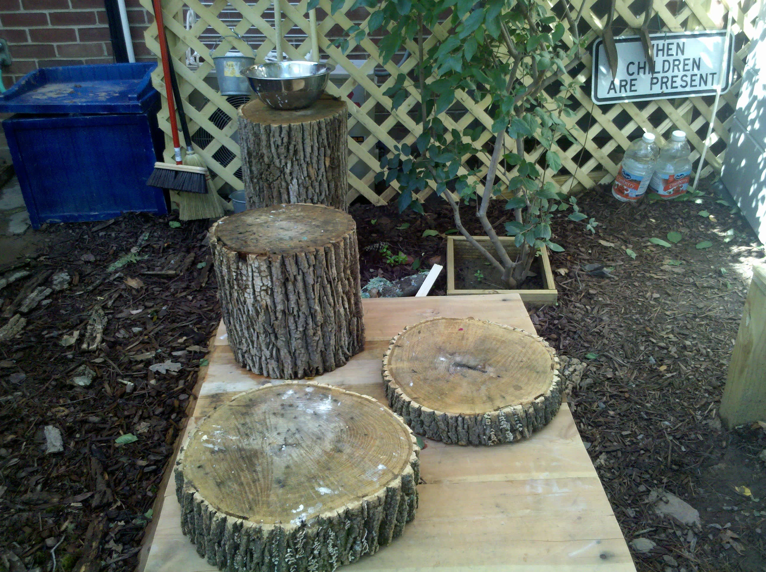 Inspiration: An Outdoor Classroom: gallery image 4