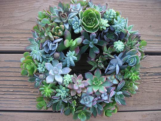 8 All Natural Wreaths: gallery slide thumbnail 5