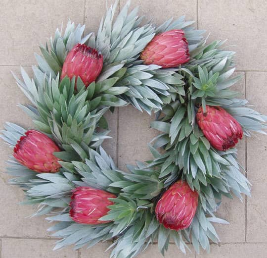8 All Natural Wreaths: gallery slide thumbnail 1