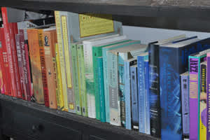 9 Ways to Organize Books: Which Is Your Style?: gallery slide thumbnail 6
