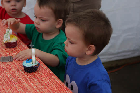 Happy Birthday Linus, Oliver & Miles: gallery slide thumbnail 5