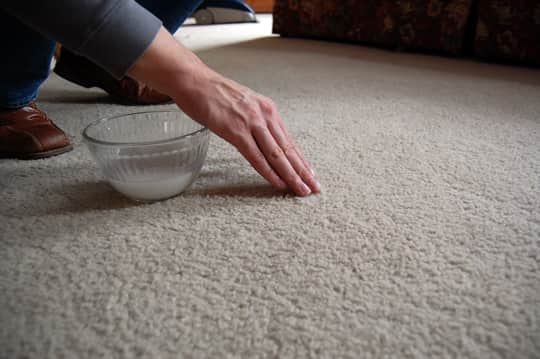 How To Deep Green Clean Your Carpets: gallery image 4