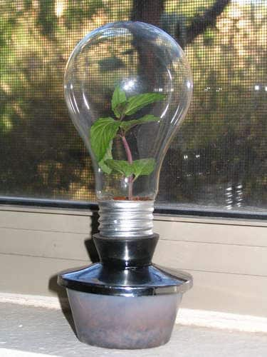 Creative Reuse: 10 Ways To Repurpose Light Bulbs: gallery slide thumbnail 7