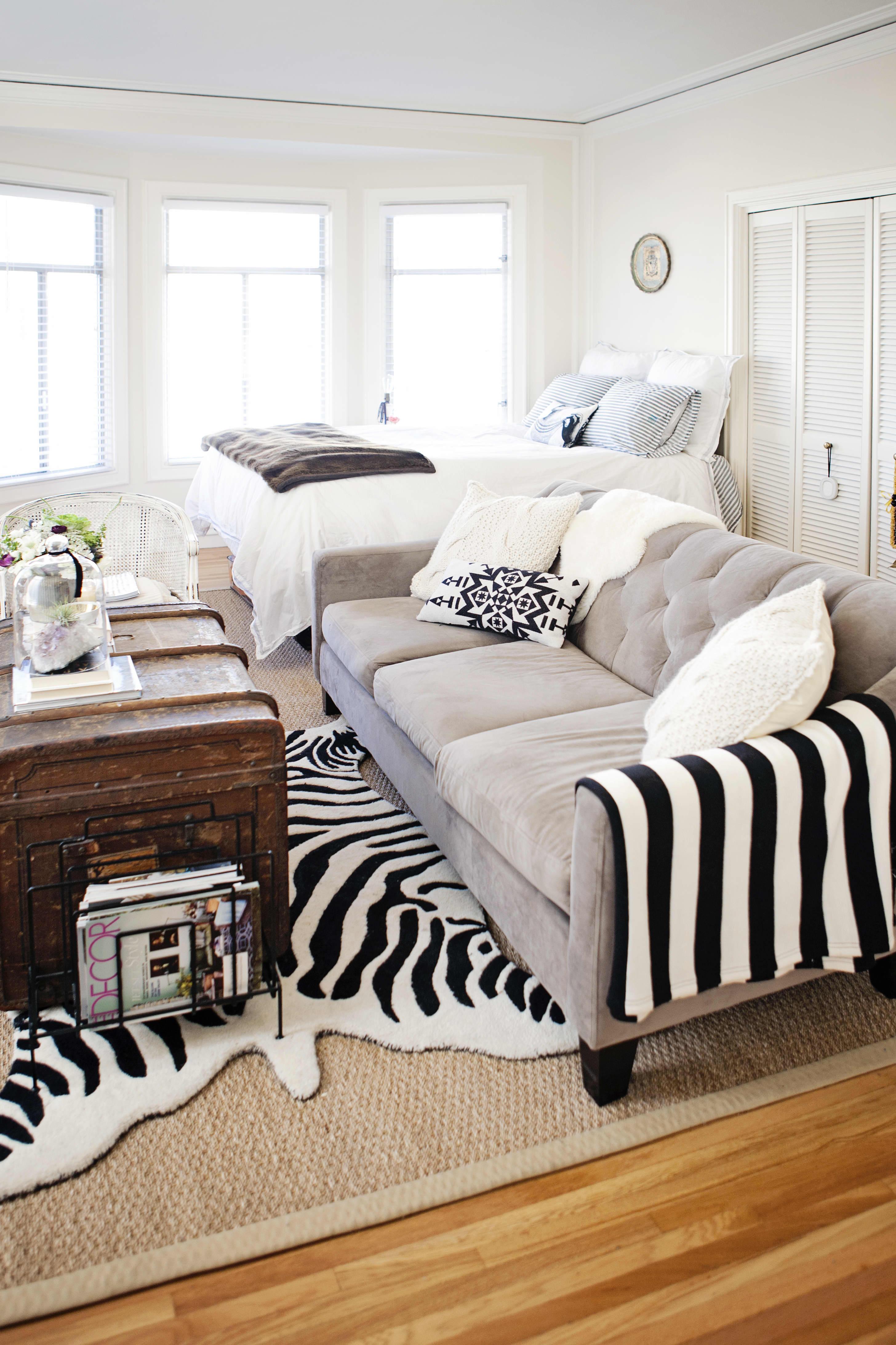 Neutral Small Studio Apartment Zebra Rug