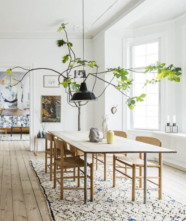 Big Apartments: Decorating Drama: 10 Really Big Plants You Can Grow